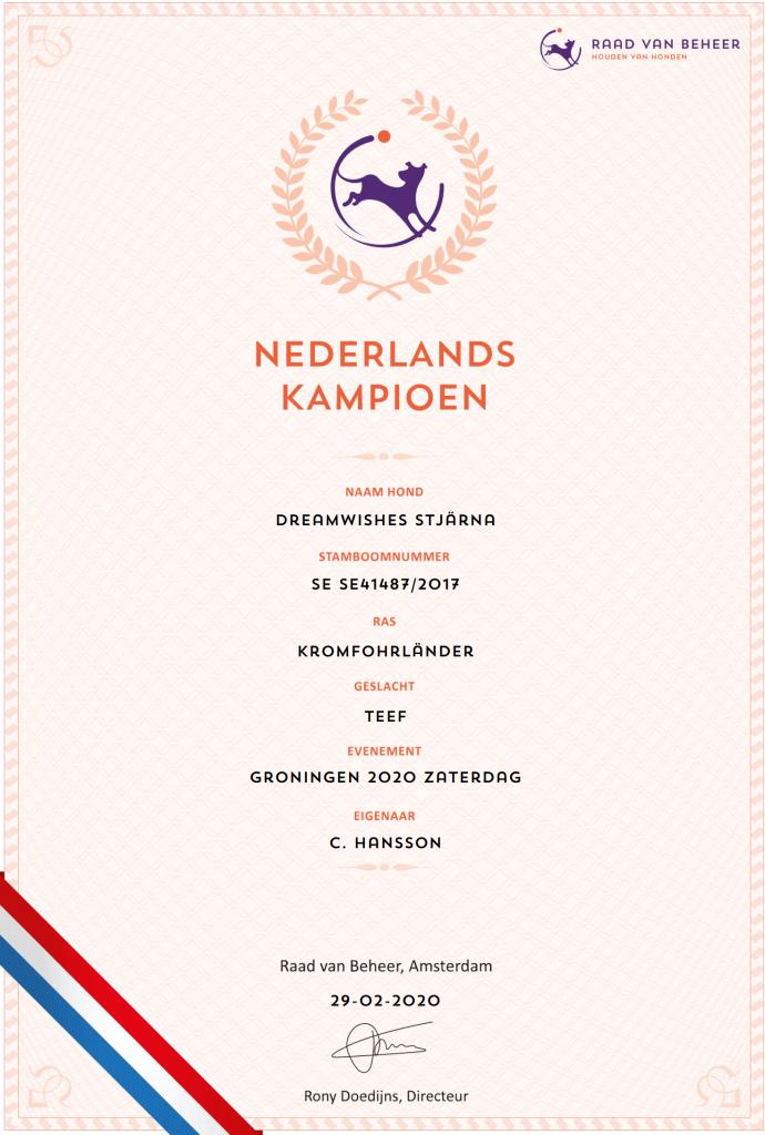Championat Nederländerna Dreamwishes Stjärna